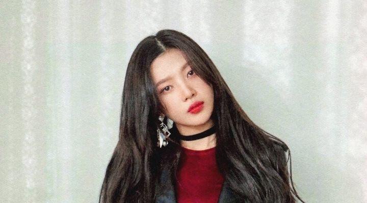 Sasaeng Menganggu Siaran Live Instagram, Joy Red Velvet Memberikan Peringatan Dan Para Fans Lainnya Ikut Kesal